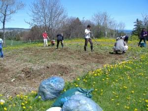 preparing_garden