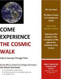 cosmic_walk